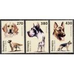 Valgevene - koerad 2003, puhas