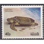 Pakistan - kilpkonn 1981, puhas
