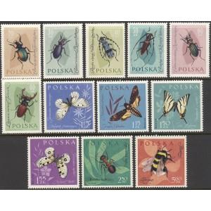 Poola - putukad ja liblikad 1961, **