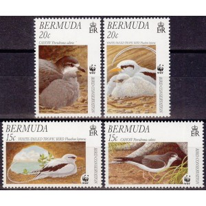 Bermuda - linnud WWF 2001, puhas