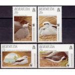 Bermuda - linnud 1997, puhas (MNH)