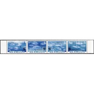Bermuda - Kalad WWF 2004, puhas