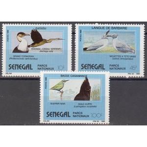Senegal - linnud 1989, puhas