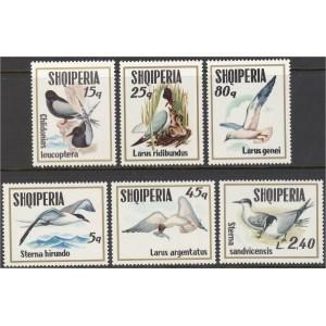 Albaania - linnud 1973, puhas