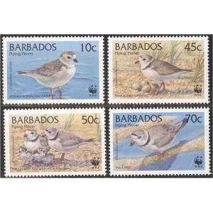 Barbados - linnud WWF 1999, **