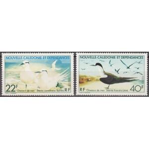 Uus-Kaledoonia - linnud 1978, puhas