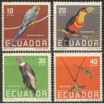 Tšiili - linnud 1986, puhas