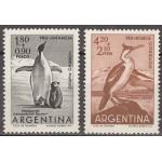 Argentiina - linnud 1960, puhas