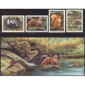 Iirimaa - loomad 2002, puhas