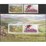 Iirimaa - putukad 2003, puhas