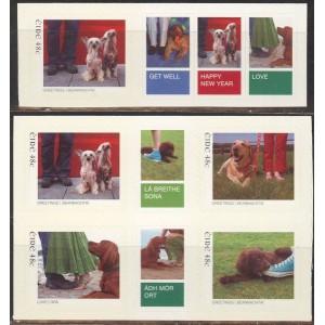 Iirimaa - loomad, uus aasta 2006, **