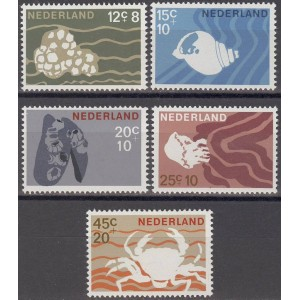 Holland - merefauna 1967, **