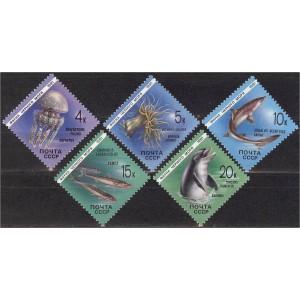 NSVL - Musta mere fauna 1991, **
