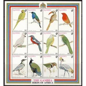 Gambia - linnud 1993, **