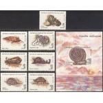 Madagaskar - molluskid 1993, **