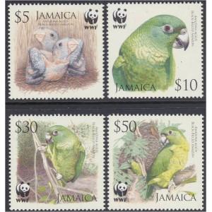 Jamaica - linnud WWF 2006, **