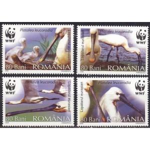 Rumeenia - linnud WWF 2006, **