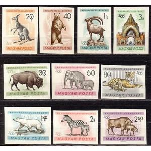 Ungari - loomad 1961, lõigatud **