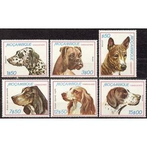 Mosambiik - koerad 1979, **