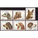 Mosambiik - koerad, MNH
