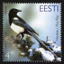 Eesti - 2003 aasta lind - harakas, **