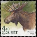 Eesti 2006 - Eesti fauna - põder, **