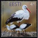 Eesti - 2004 aasta lind - valge toonekurg, **