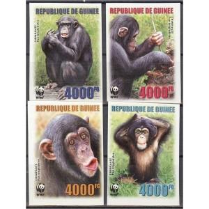 Guinea - loomad WWF, ahvid 2006, lõigatud **