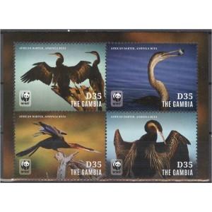 Gambia - linnud WWF, **