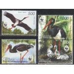 Valgevene - linnud WWF 2005, **