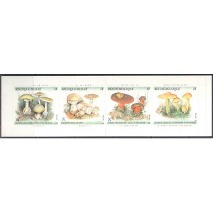 Belgia - seened 1991, margivihik **