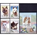 Põhja-Korea - kassid ja koerad 2002, **