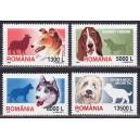 Rumeenia - koerad 2001, **