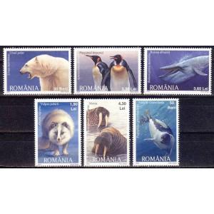 Rumeenia - polaaralade fauna 2007, **