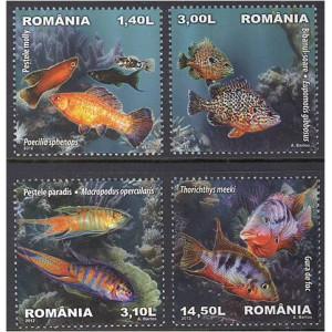 Rumeenia - kalad 2012, **