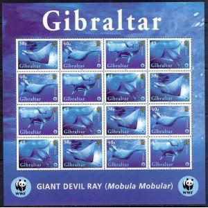 Gibraltar - merefauna WWF, raid 2006, väikep. **