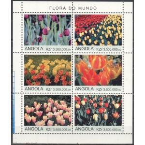 Angoola - lilled, tulbid 2000 (I), **